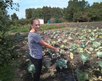 В селе Останино будет богатый урожай 2019!